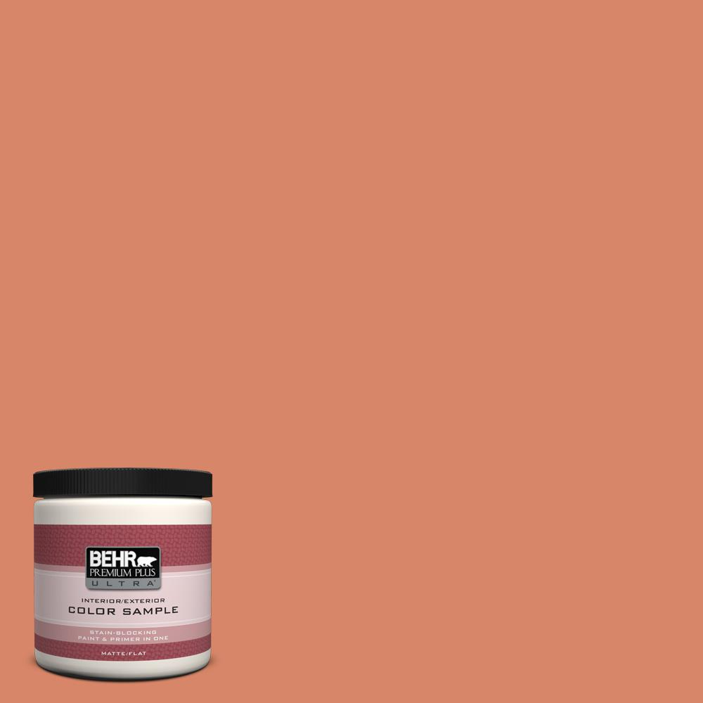 M180 5 King Salmon Matte Interior Exterior Paint And Primer In One Sample