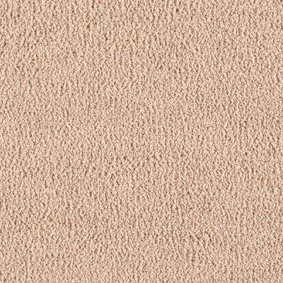 Carpet Sample - Collinger II Color - Feather Light Texture 8 in. x 8 in.
