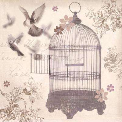 22.8 in. x 22.8 in. x 0.75 in. Silver Birdcage by Arthouse frameless canvas wall art painted print