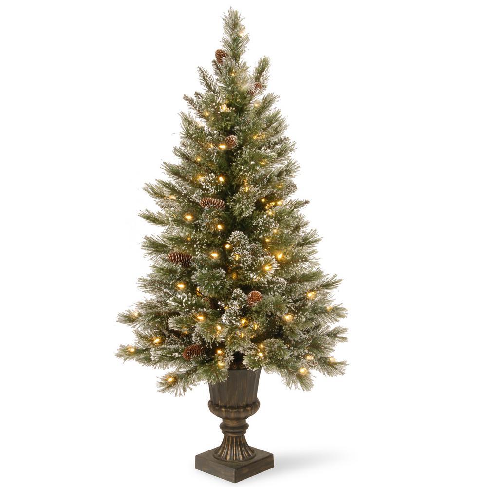 50 Foot Christmas Tree: National Tree Company 5 Ft. Glittery Bristle Entrance