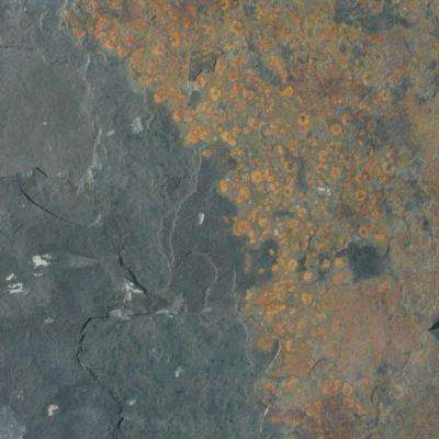 Outdoor/Patio - Slate Tile - Natural Stone Tile - The Home Depot