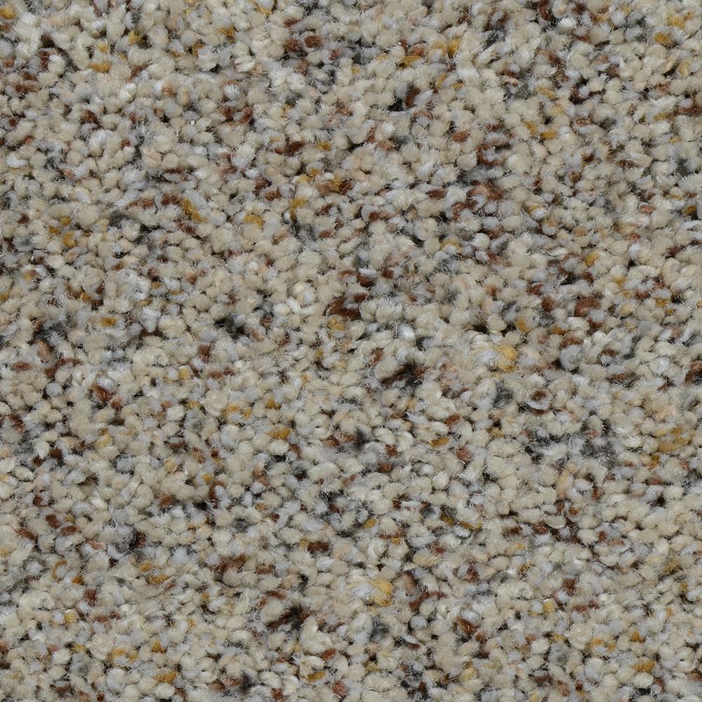 Home Decorators Collection Carpet Sample Beach Club I