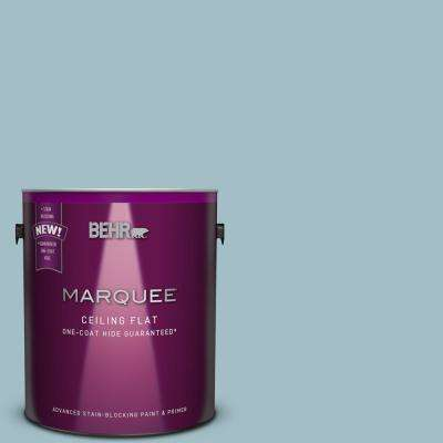 1 gal. #PPU13-11 Tinted to Clear Vista One-Coat Hide Flat Interior Ceiling Paint and Primer in One