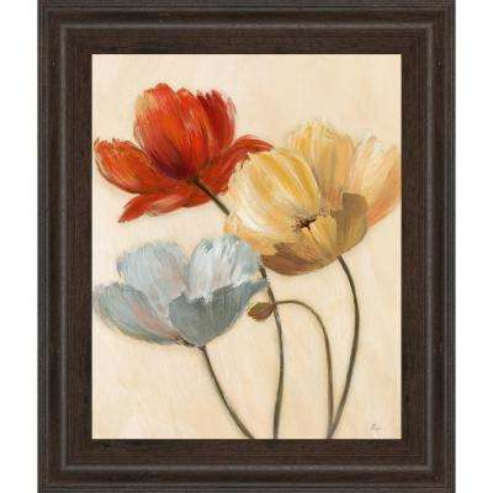 """22 in. x 26 in. """"Poppy Palette II"""" by Nan Framed Printed Wall Art"""