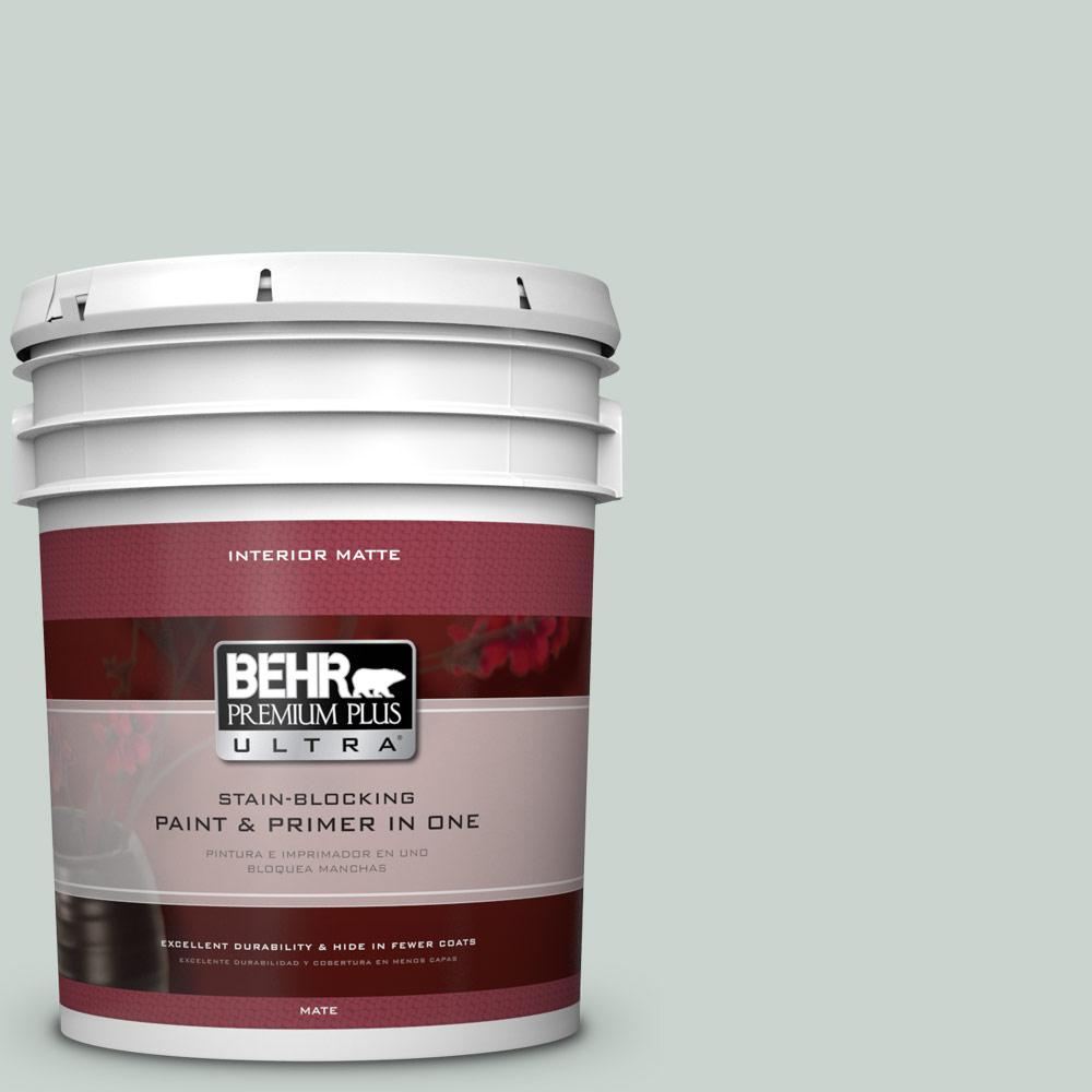 BEHR Premium Plus Ultra 5 gal. #PPU12-11 Salt Glaze Flat/Matte Interior Paint