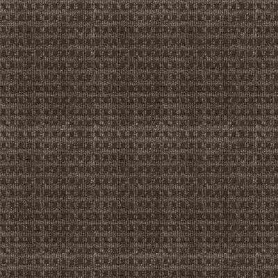 Serenity - Color Espresso Pattern Indoor/Outdoor 12 ft. Carpet