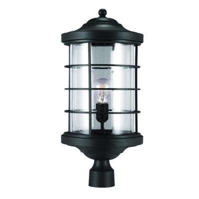 Sauganash 1-Light Outdoor Black Post Lantern with Clear Seeded Glass