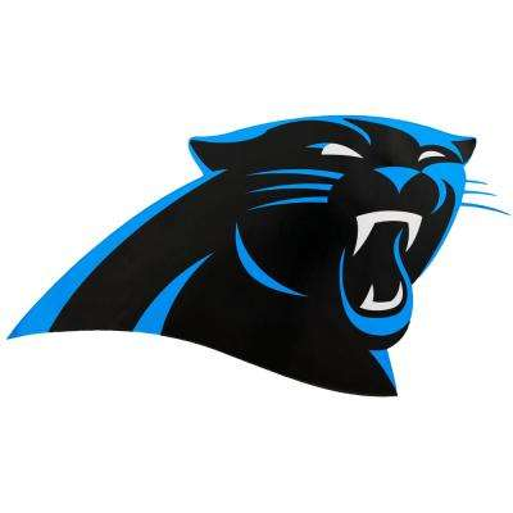 NFL Carolina Panthers Outdoor Logo Graphic- Large