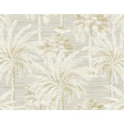 Dream Of Palm Trees Sand Texture Wallpaper