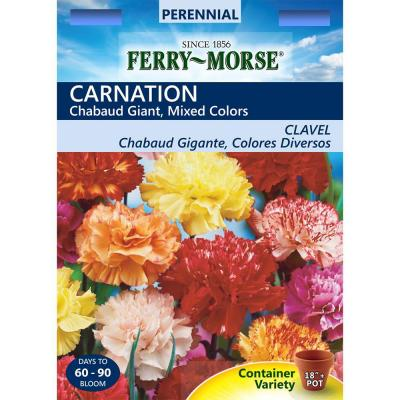 Carnation Chabaud Giant Mixed Colors Seed