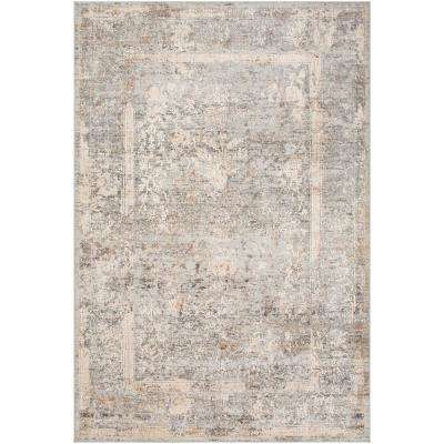 Magda Grey 2 ft. x 3 ft. Distressed Area Rug