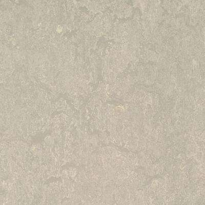 Concrete 9.8 mm Thick x 11.81 in. Wide x 35.43 in. Length Laminate Flooring (20.34 sq. ft. / case)