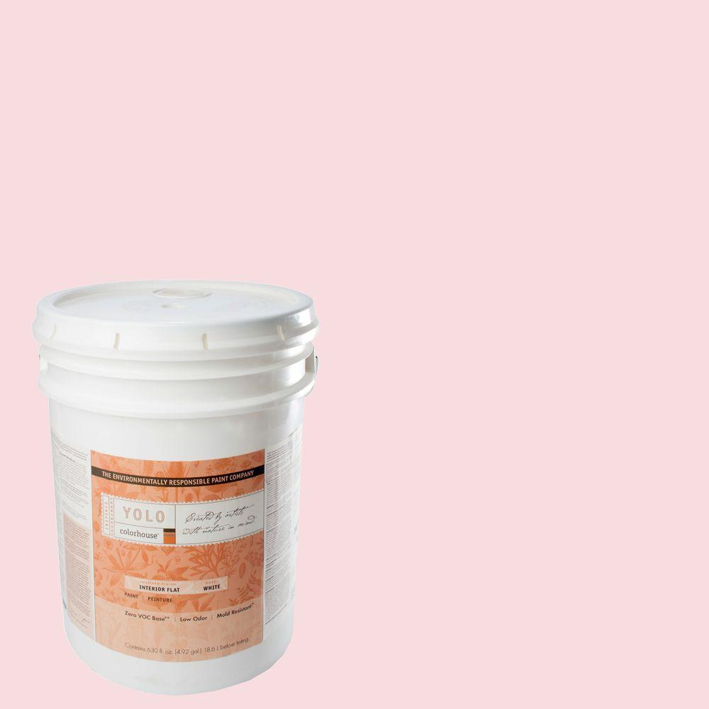 YOLO Colorhouse 5-gal. Sprout .06 Flat Interior Paint-DISCONTINUED