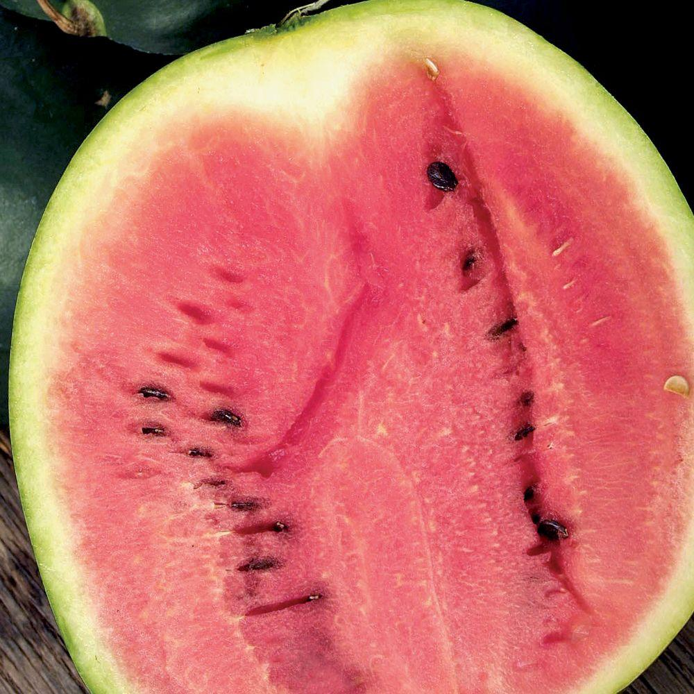 Seeds of Change Watermelon Sugar Baby Seeds Pack