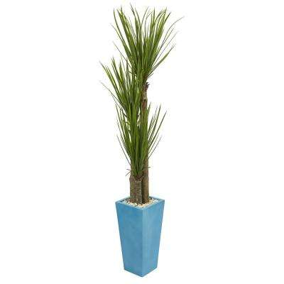 6 ft. Indoor Triple Stalk Yucca Artificial Plant in Turquoise Planter