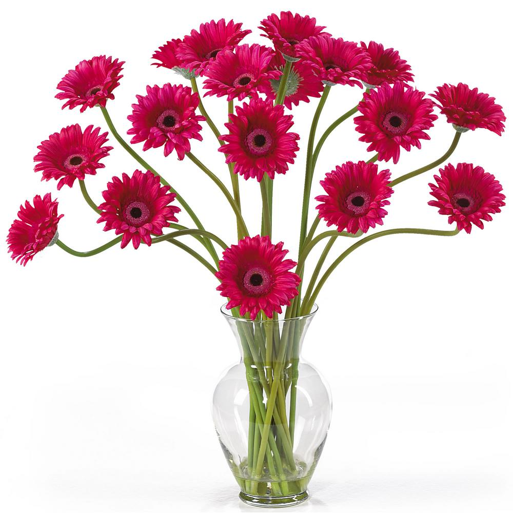Nearly Natural 21 in. Gerber Daisy Liquid Illusion Silk Flower Arrangement in Beauty Take a look at this Gerber Daisy silk arrangement. Fun, excitement, and color only begin to describe its beauty. Standing 21 in. tall this exciting piece features eighteen stems of Gerber Daisy's set in a classic glass vase with artificial water. If you're looking to brighten up your home or office decor, well. You've just found a winner. Available in five gorgeous shades: beauty, orange, pink, red, yellow and mixed.