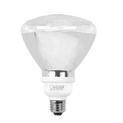 90-Watt Equivalent Soft White (2700K) PAR38 CFL Flood Light Bulb (12-Pack)