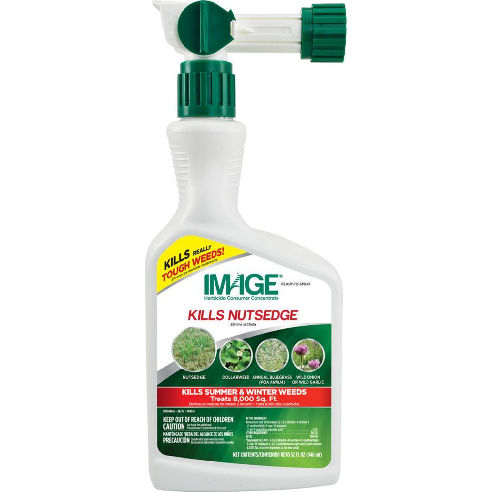IMAGE 32 oz. Ready-to-Spray Nutsedge Killer