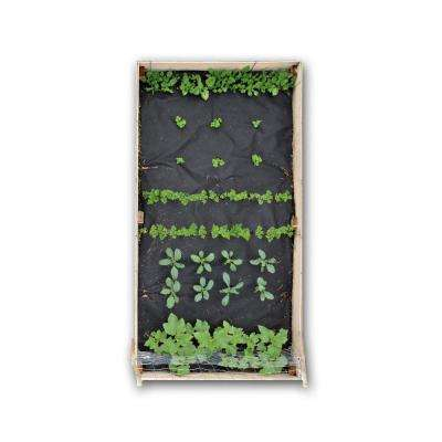 48 in. x 96 in. Raised Bed Garden Smoothie Kit with Spinach, Parsley, Carrots, Kale and Cucumber