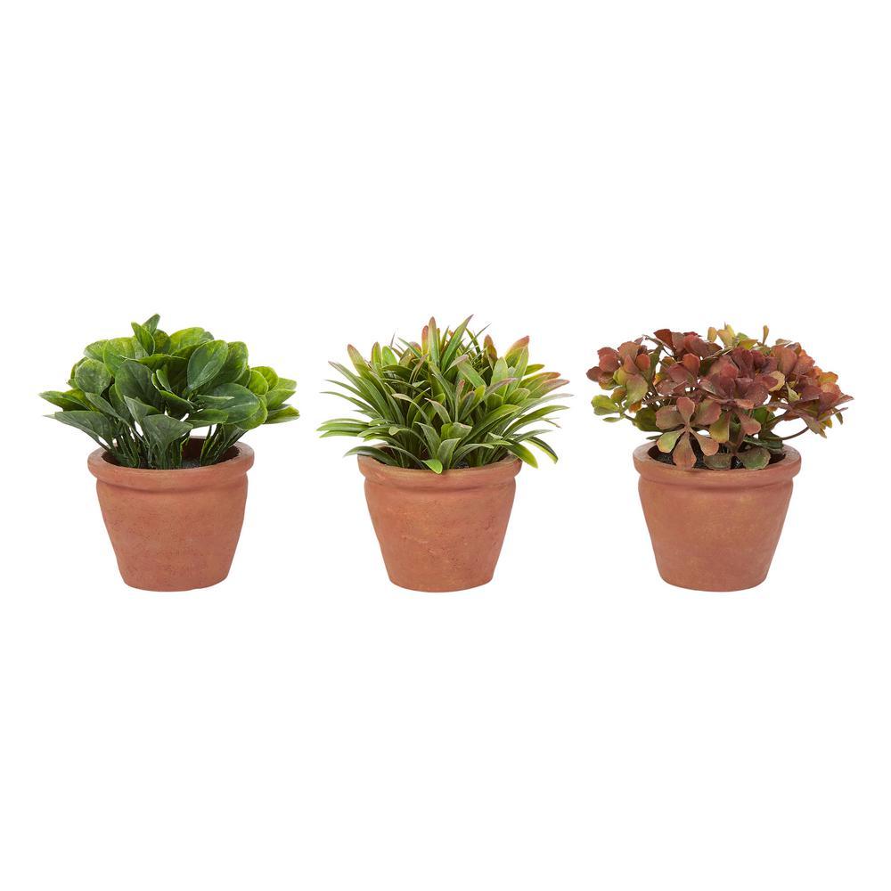 6 in. Assorted Artificial Greenery Arrangements (Set of 3)