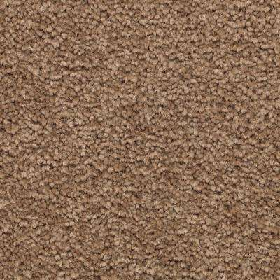 Carpet Sample - Unblemished I - Color Vision Textured 8 in. x 8 in.
