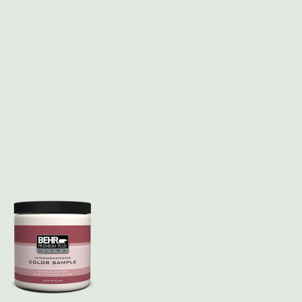 8 oz. #450E-1 Shimmer Flat Interior/Exterior Paint and Primer in One