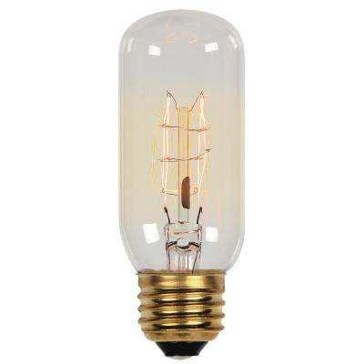 60-Watt Timeless Vintage Inspired Incandescent T12 Light Bulb