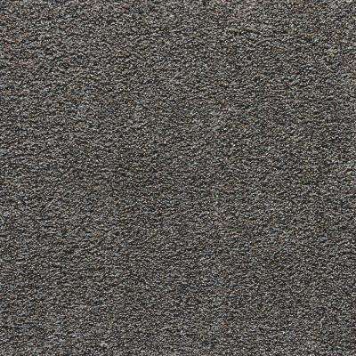 Playful Moments II - Cape Cod Textured 12 ft. Carpet