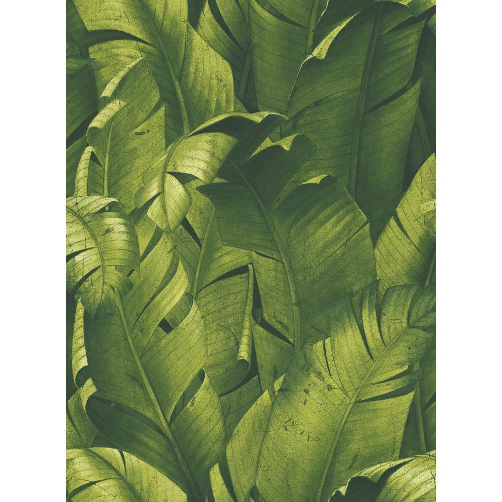 Tropical Banana Leaves Peel and Stick Wallpaper
