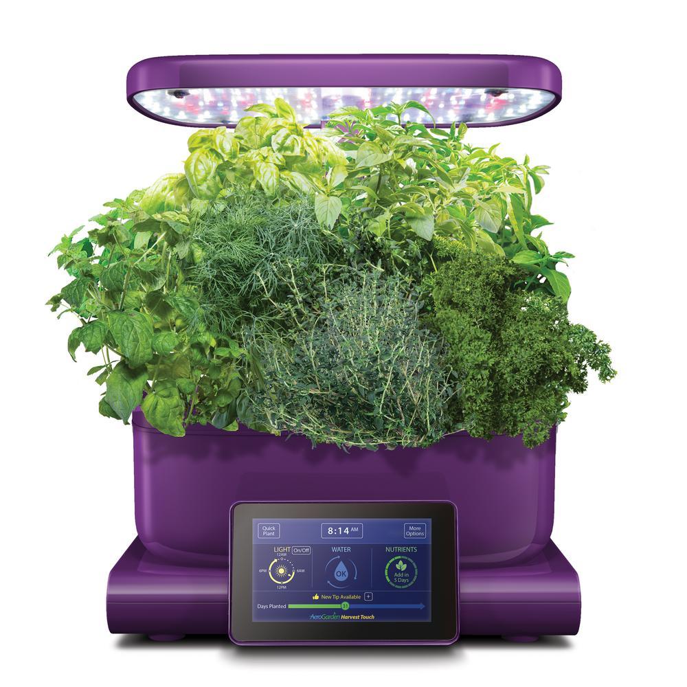 AeroGarden Harvest Touch Indoor Hydroponic Garden Kit in Eggplant