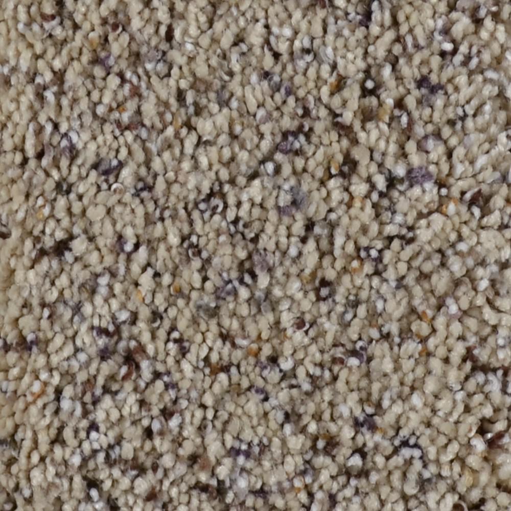 Carpet Sample - Gratitude I - Color Appleton Texture 8 in. x 8 in.