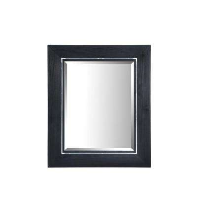 Manhattan 20 in. W x 30 in. L Wall Mirror in Black