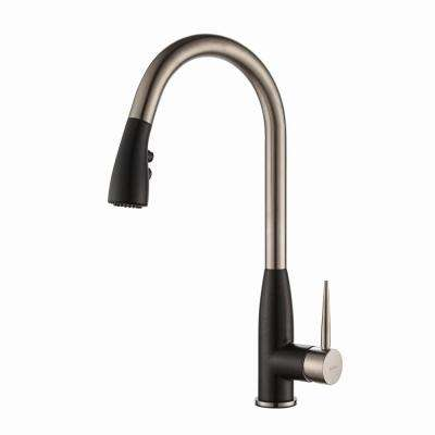 Geo Arch Single-Handle Pull-Down Sprayer Kitchen Faucet with Soap Dispenser in Stainless Steel/Black Onyx