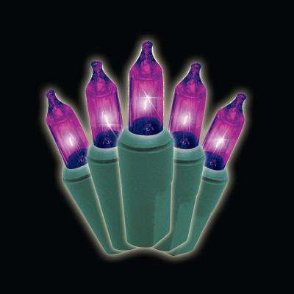 50-Light Purple Strand Lights (Box of 2)