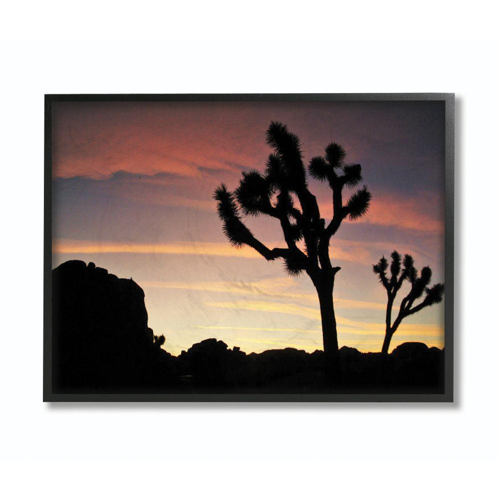 Stupell Industries 11 In X 14 In Desert Tree Sunset Silhouette Photograph By Joseph Elliott Framed Wall Art Aba 105 Fr 11x14 The Home Depot