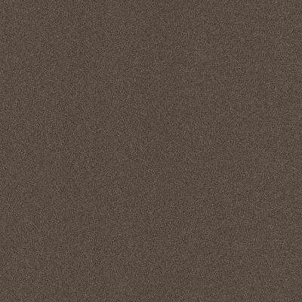Arcadian - Color Espresso Texture Indoor/Outdoor 12 ft. Carpet