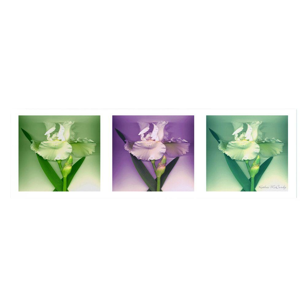 Trademark Fine Art 12 in. x 32 in. Three White Iris Canvas Art