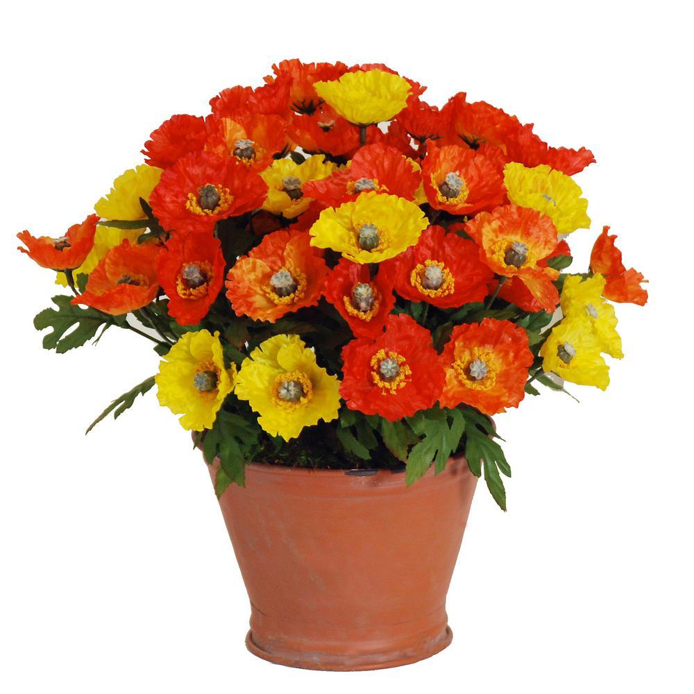 12 in. Wild Poppies Terra Cotta Pot in Yellow/Orange Flowers