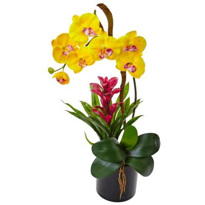 Orchid and Bromeliad Silk Arrangement