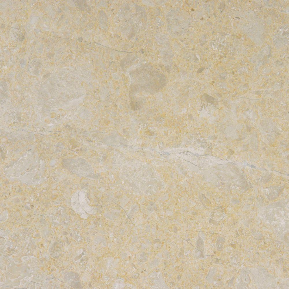 MSI Desert Sand 12 in. x 12 in. Polished Marble Floor and Wall Tile (10 sq. ft. / case)