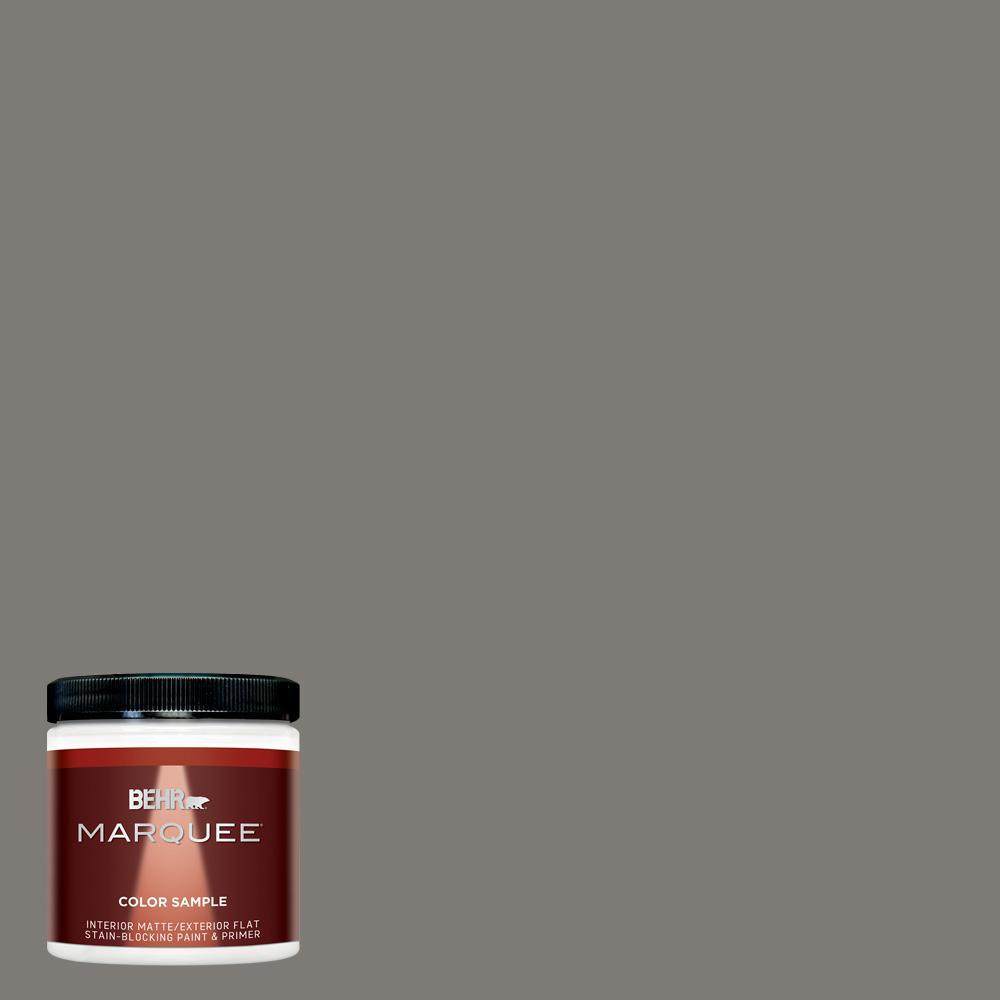 8 oz. #PPU24-21 Greyhound Interior/Exterior Flat/Matte Paint Sample
