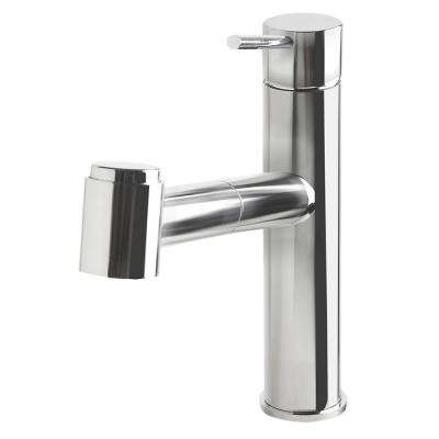 Single-Handle Pull-Out Sprayer Kitchen Faucet in Polished Stainless Steel