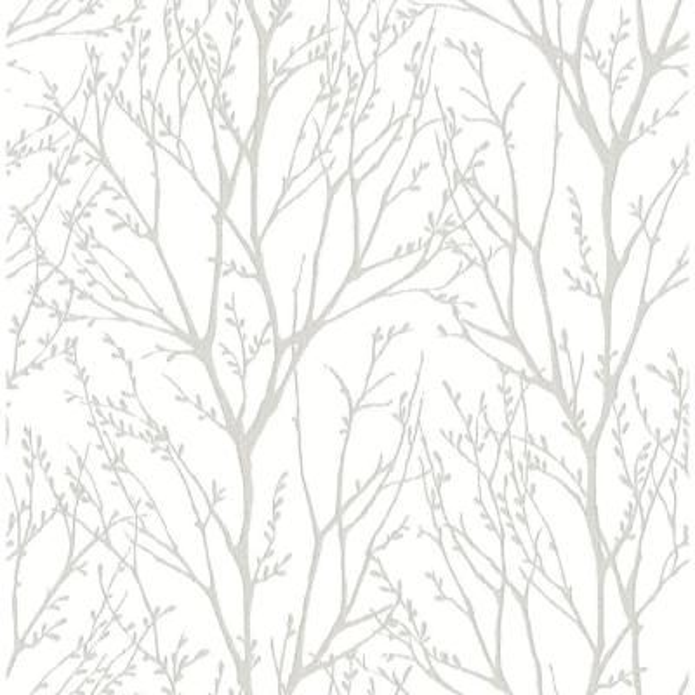 Autumn Silver Tree Wallpaper