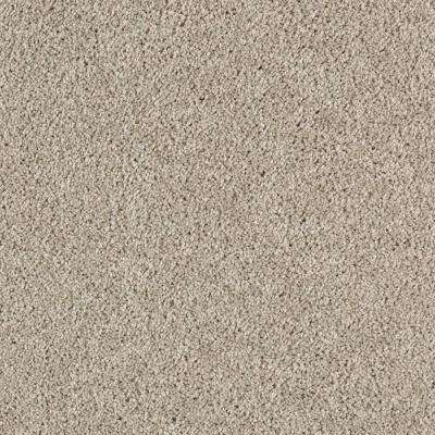 Carpet Sample - Ambrosina I - Color Airway Texture 8 in. x 8 in.