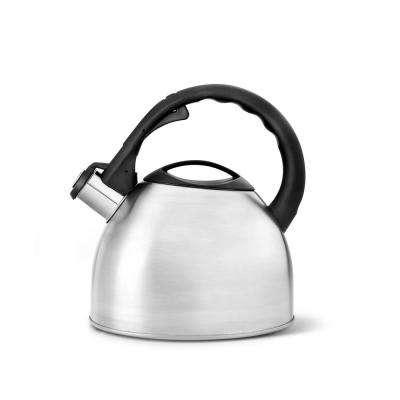 10-Cups Satin Teakettle