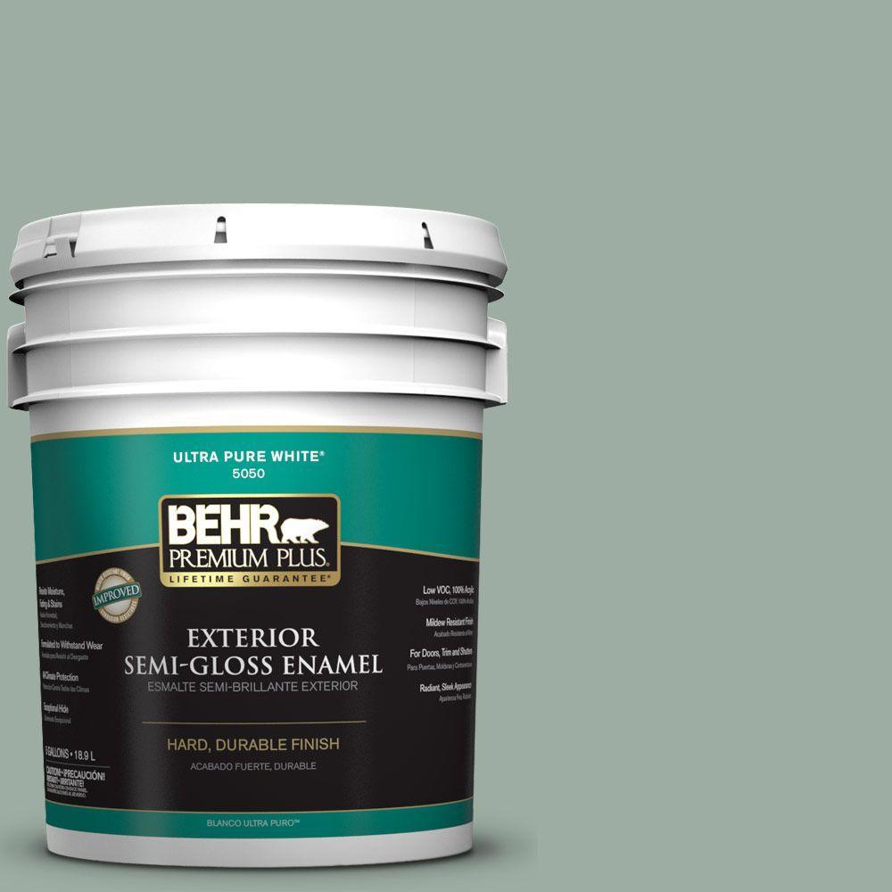 5-gal. #N420-3 Misty Moss Semi-Gloss Enamel Exterior Paint