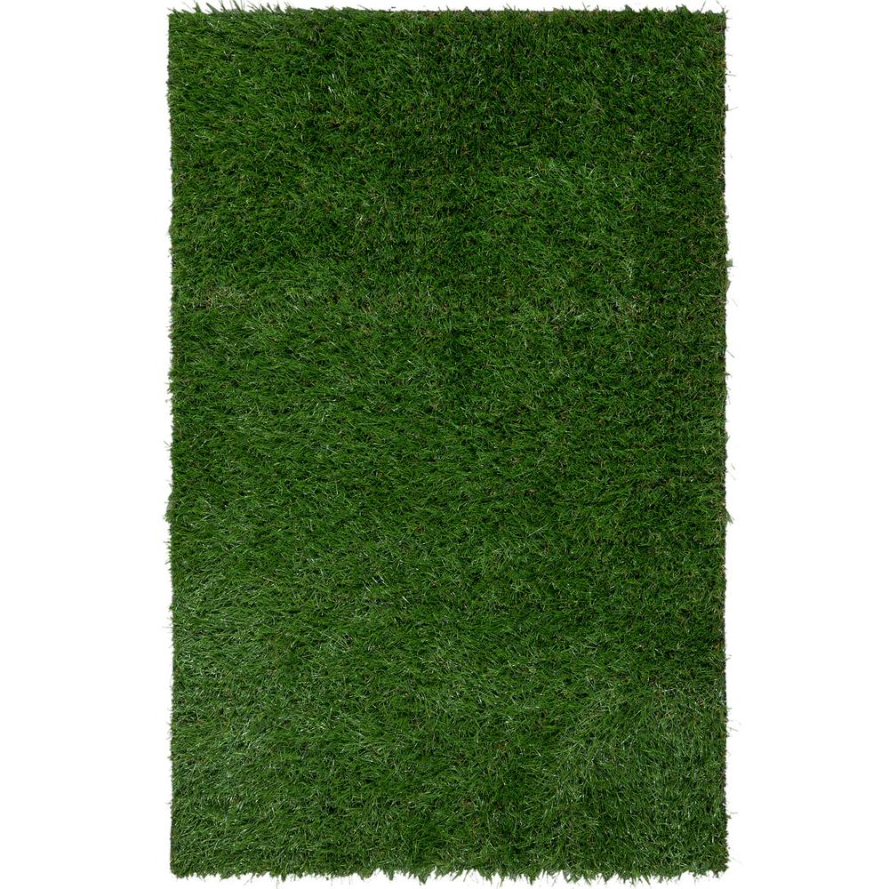 series grass patriot spring syntheticgrass outdoor florida jacksonville rug fakegrass artificial