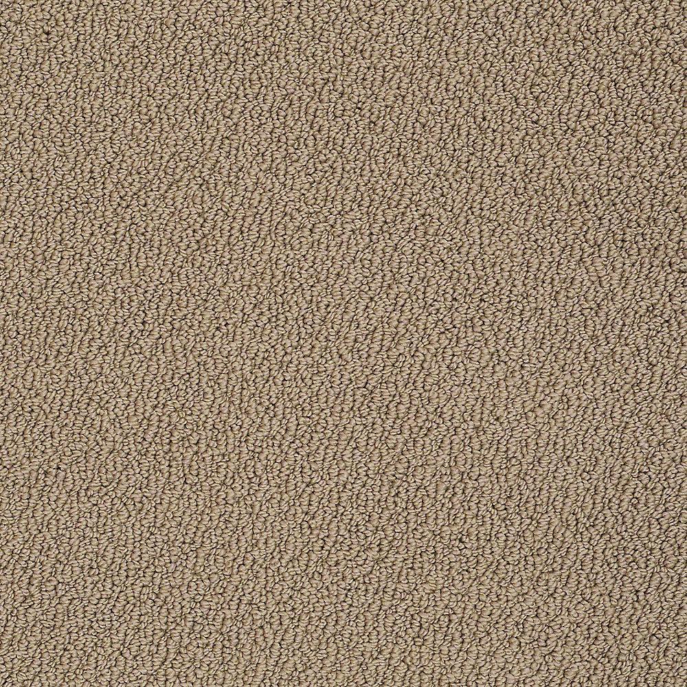 Platinum Plus Carpet Sample Treasure In Color Pine