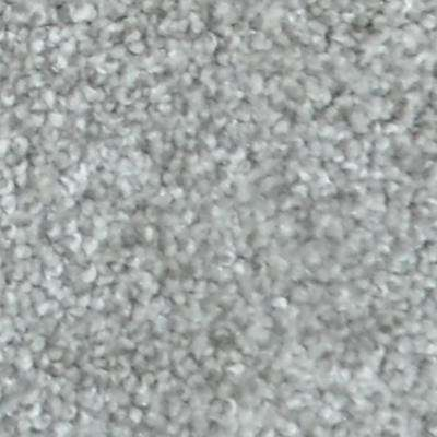Carpet Sample - Harvest II - Color Shady Brook Texture 8 in. x 8 in.