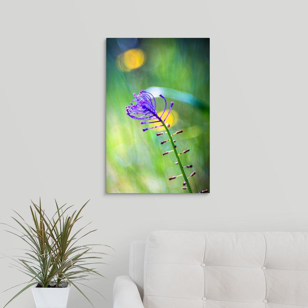 Greatcanvas Purple Flower By Marco Carmi Canvas Wall Art 2532195 24 16x24 The Home Depot